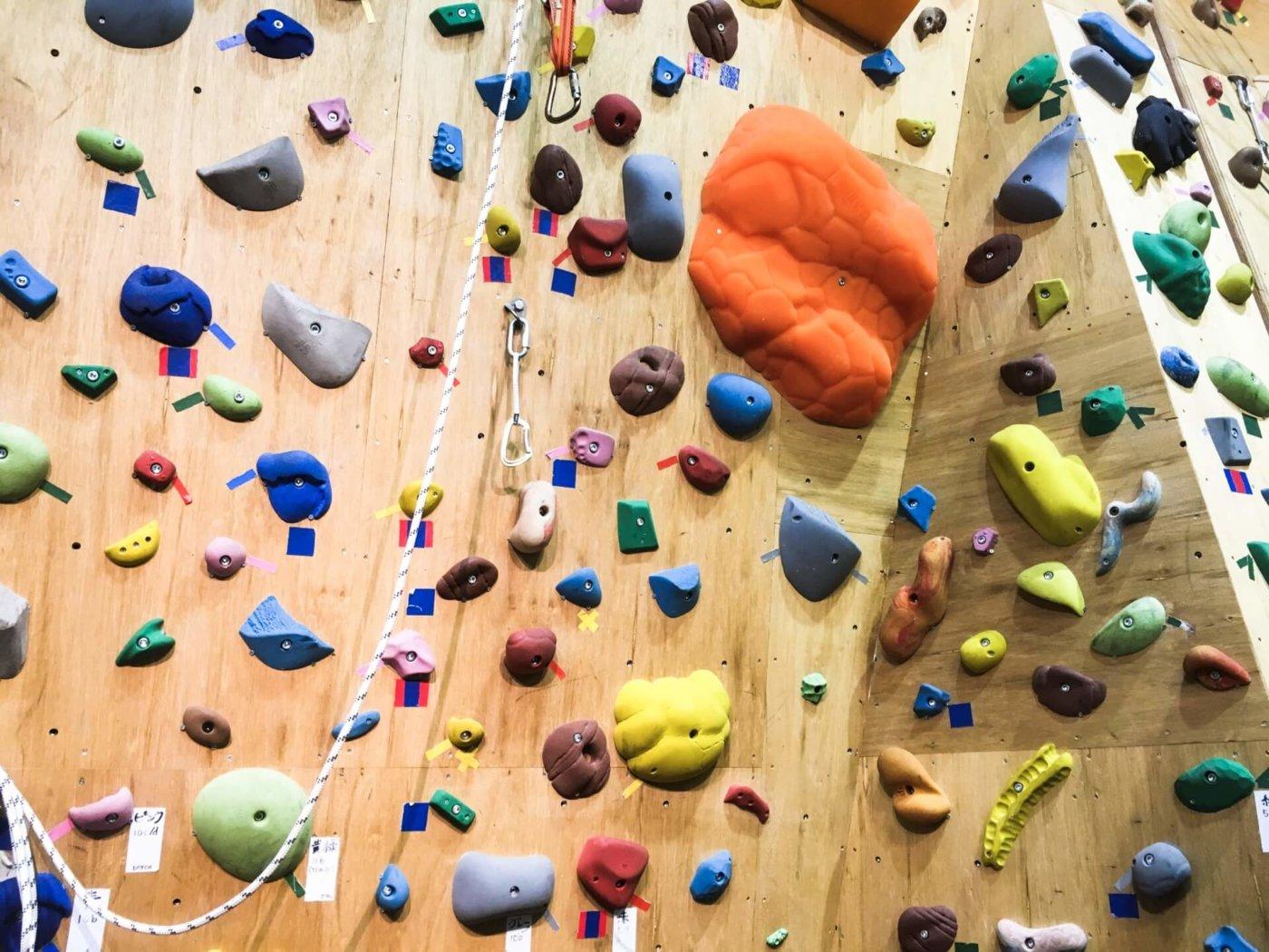 ボルダリングがうまくなりたい!懸垂によるトレーニングと実際に登ることのどちらを優先すべき?