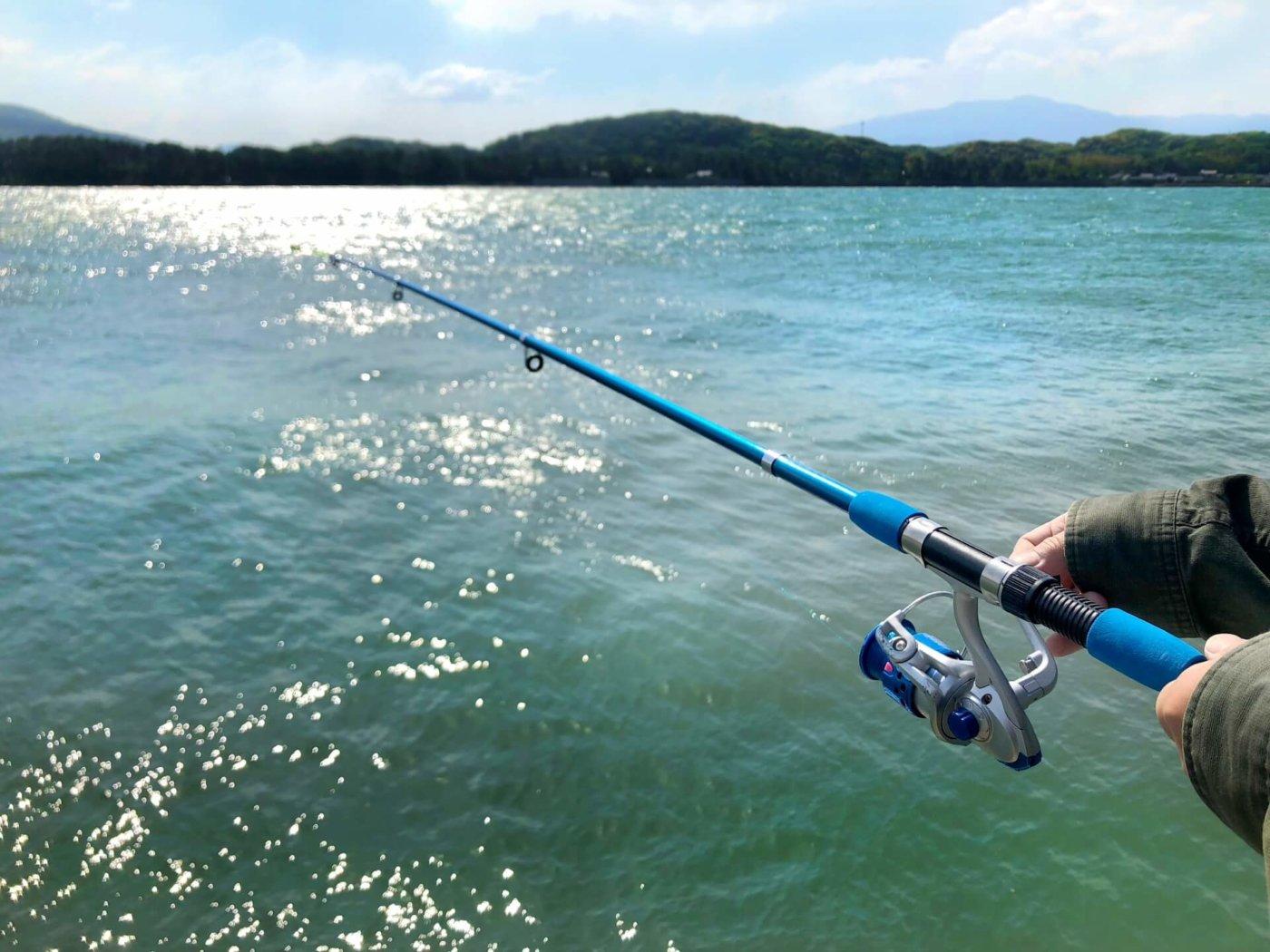 沢山魚が釣れる場所知りたい!沼津の釣りスポット3選