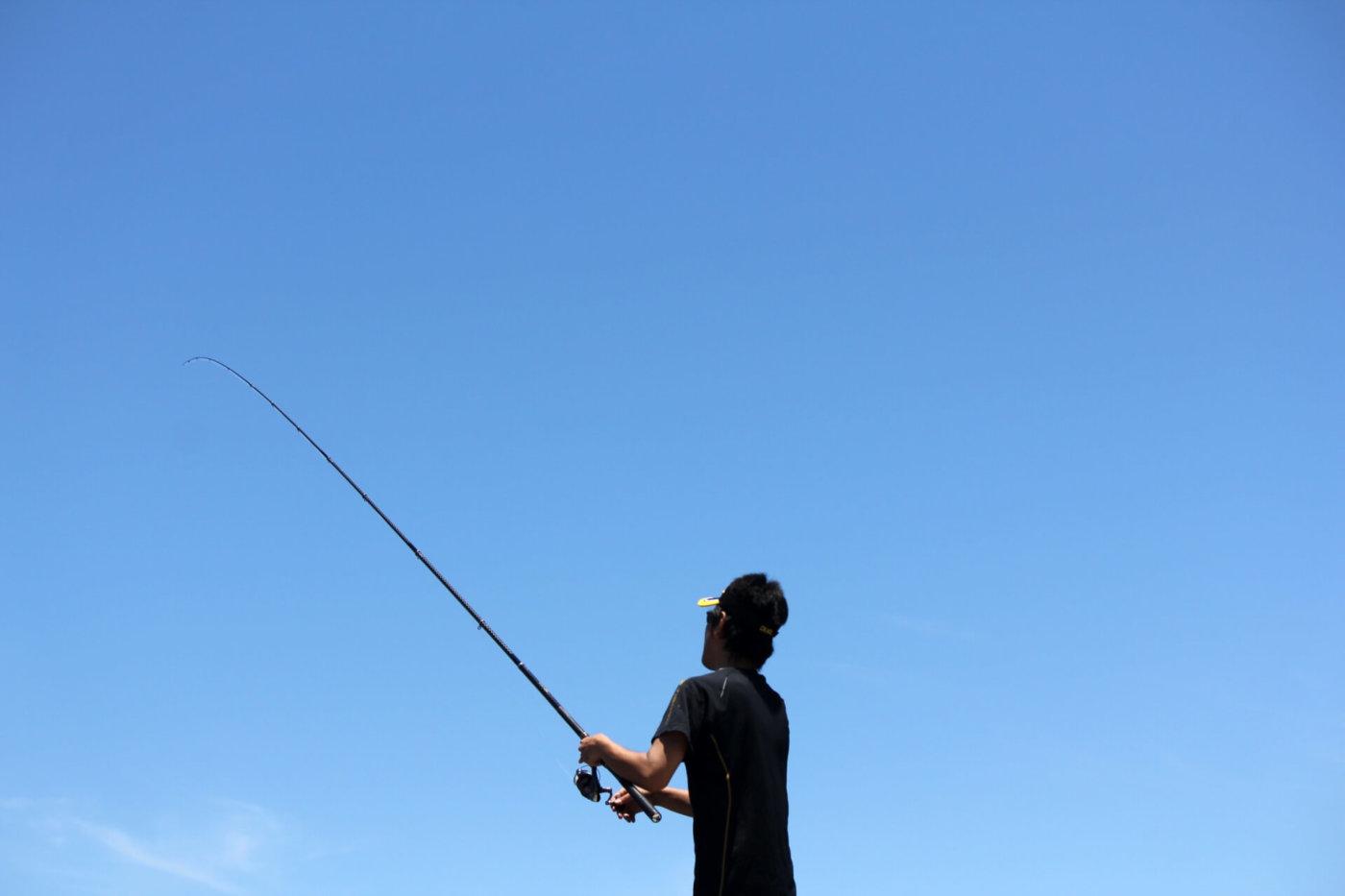 教えて!5月に釣りをするとどんな魚がとれる?