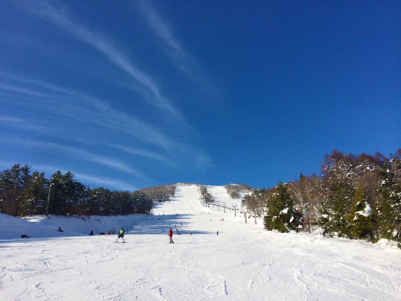 初心者が知りたい!スキーのチューンナップについて