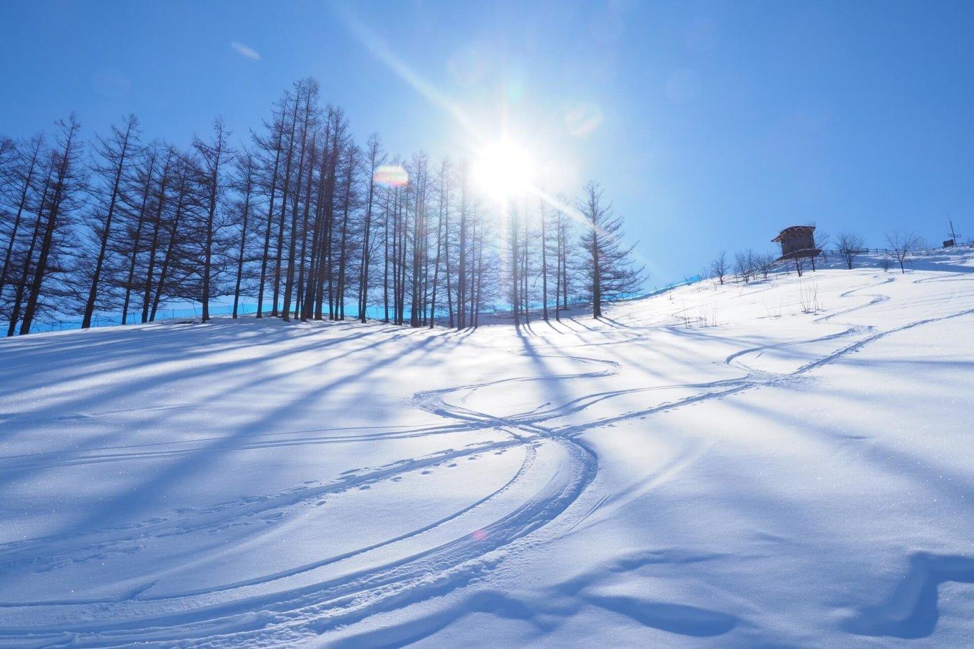 スマート&スムーズ! スキーをレンタル用品で楽しむコツ