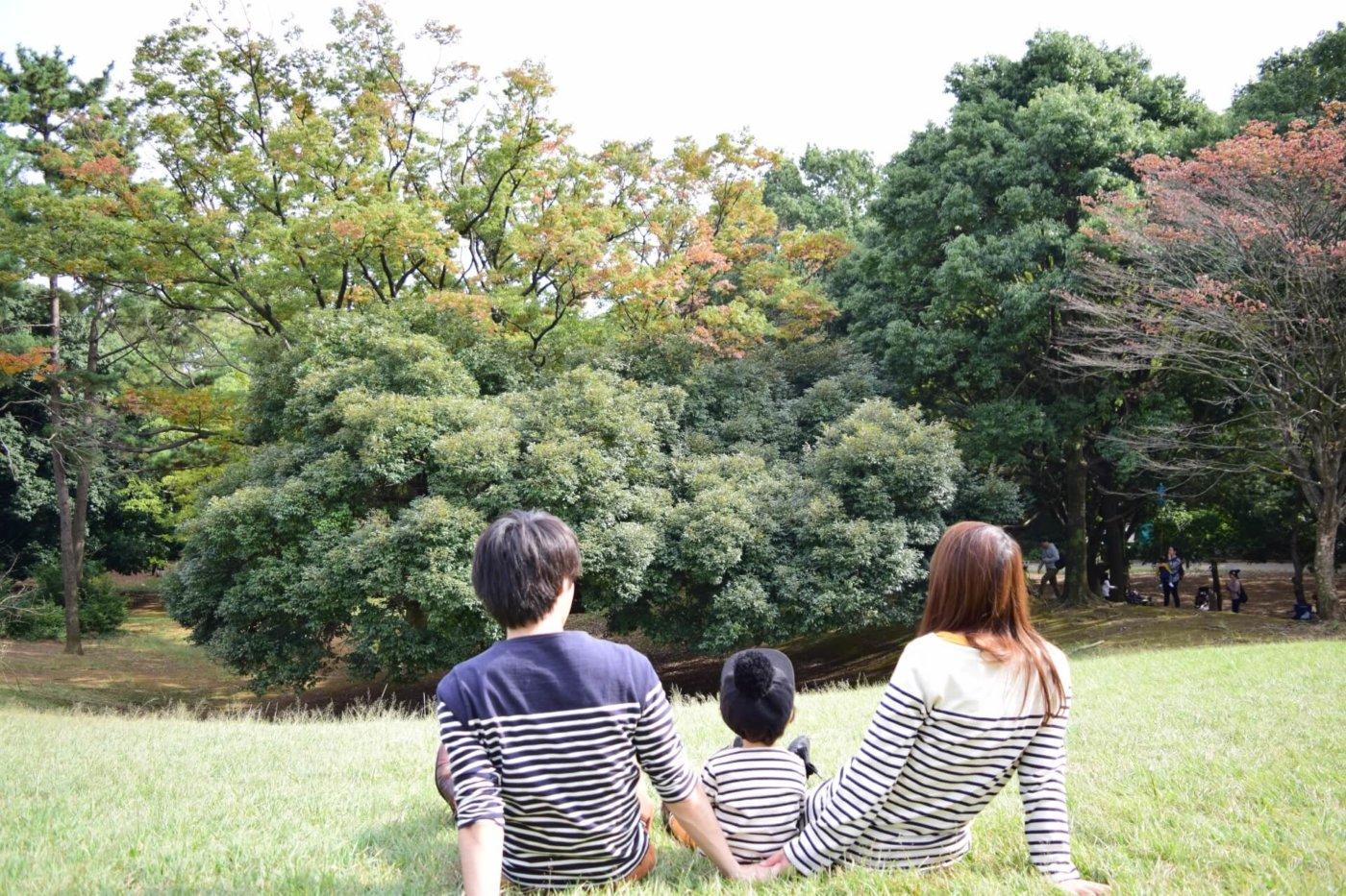 東京都内でもピクニックが楽しめる!お気に入りのスポットをみつけよう