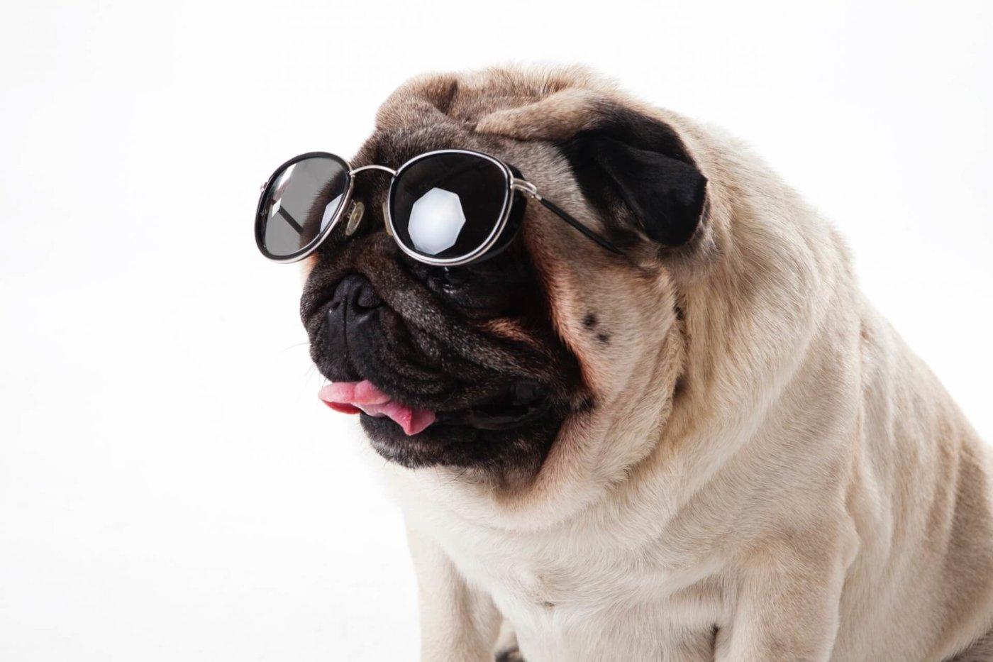 ランニングにおけるサングラスの役割とは?