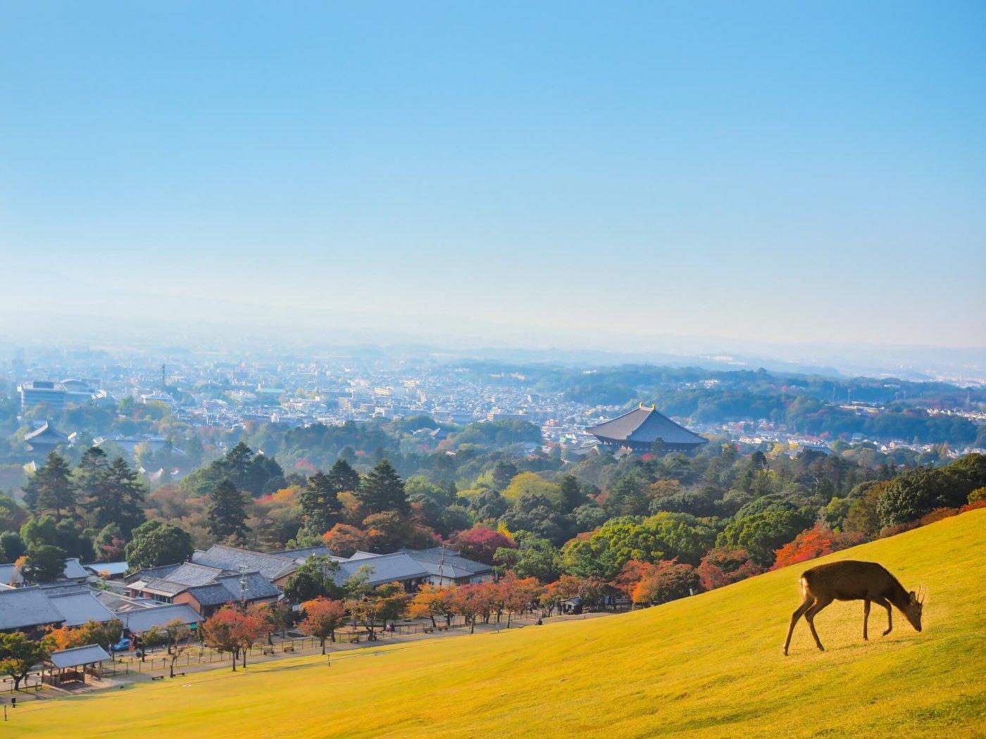 一度は行ってみたい!関西のハイキングスポット。