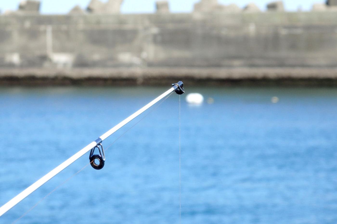 アオリイカを釣りたい!関西でオススメのエギングスポット5選