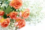 送別会の予算が少ない!渡す花束に1000円しか出せなくても豪華にできる方法